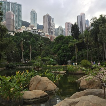Hong Kong Park, skyline view from above the lake