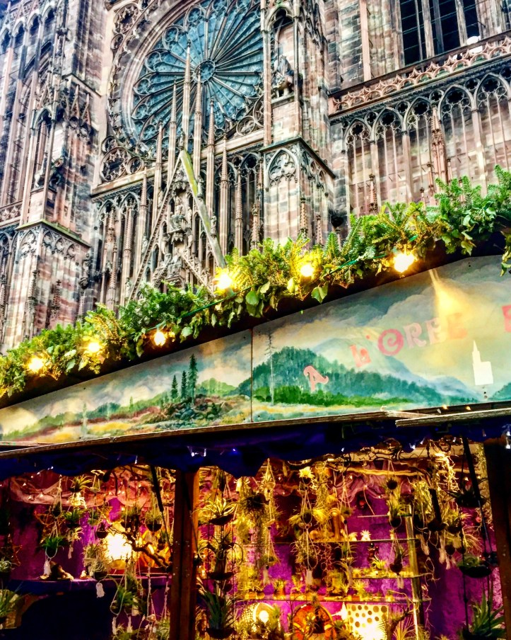 Strasbourg Cathedral in and its adjoining Christmas market