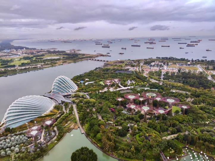 Two Days in Singapore - gardens by the bay