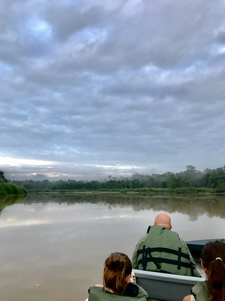 Sukau Rainforest Lodge  kinabantagan river cruise