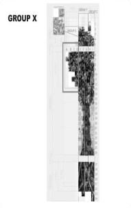 SWC_w_ArtWalk_Key_for_Brightview_Tree_of_Life_individual_art_panels