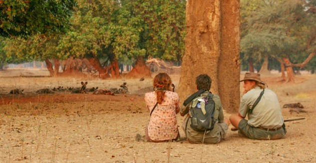 Mike and Nancy are the two people on the left, observing wild African painted dogs in Zimbabwe.