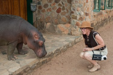 Nancy with a rehabbed orphaned hippo and Nancy on a Dazzle Africa philanthropic safari (they are safari coordinators/leaders at Dazzle Africa and Mike is on board of directors).