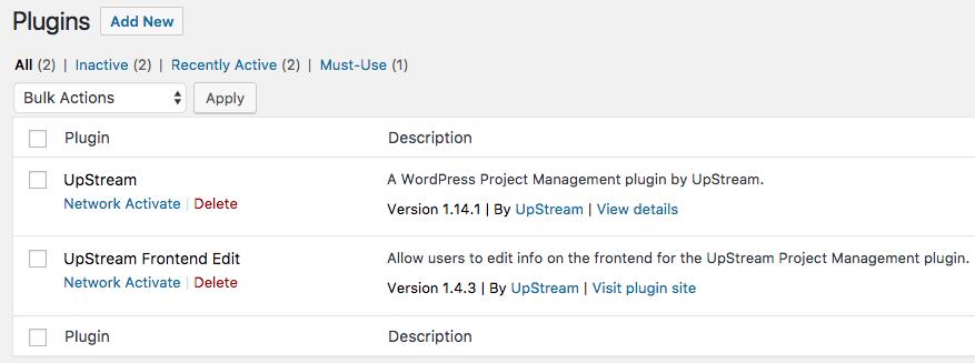 Installing plugins in a WordPress multisite