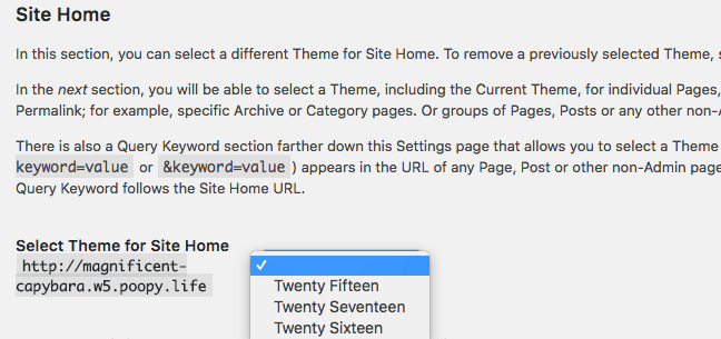 Different theme on your WordPress homepage