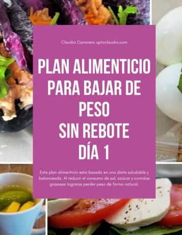 Plan alimenticio para bajar de peso sin rebote día 1