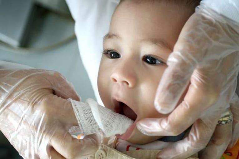 Bebés no Dentista
