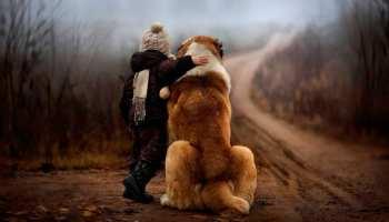 Os amigos de 4 patas são amigos para a vida