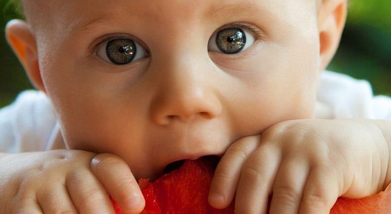 os bebes não comem papas