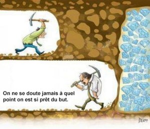 citation business perseverance, ne rien lacher, perceverance