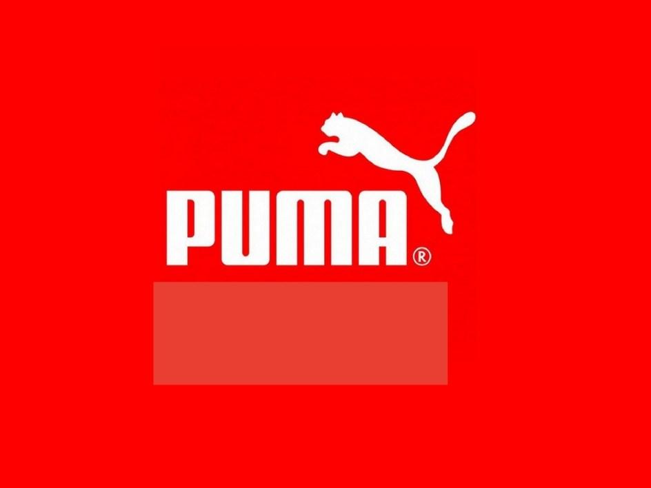 puma-upUgo-Partners