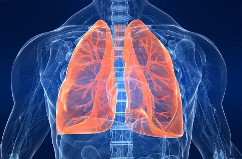 a tüdő tisztítása a népi gyógymódok dohányzásakor