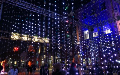 TORONTO LIGHT FEST IS BACK