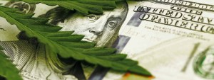 cannabis funding