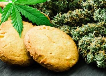 Marijuana Financing: How Do Cannabis Business Loans Work?