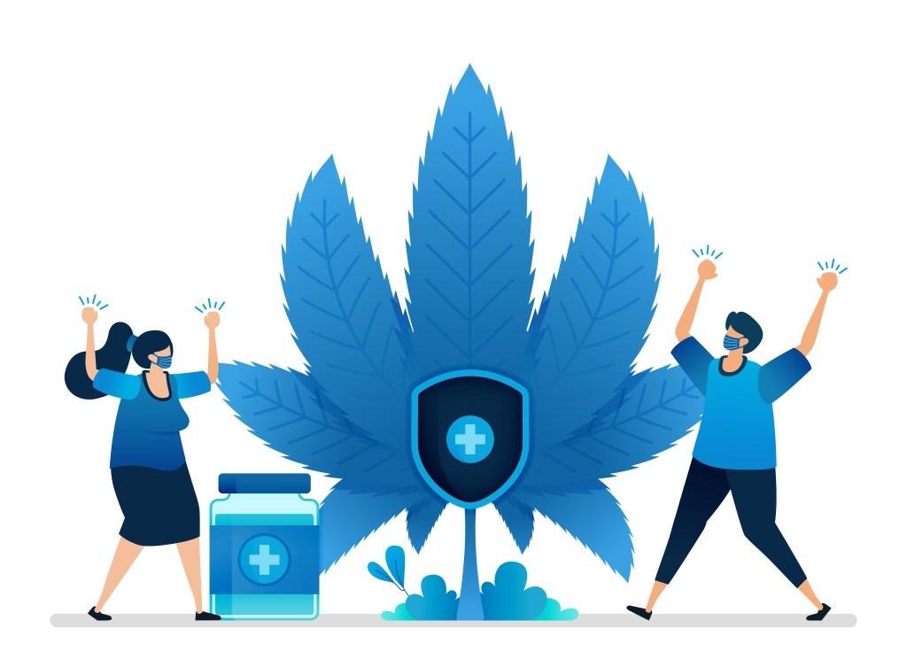 cannabis equipment financing