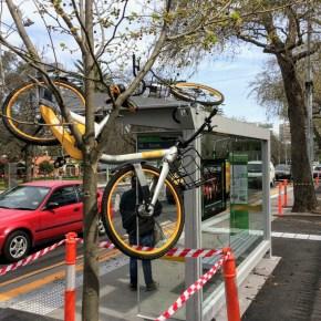 New Conversation article by Dorina Pojani and Jonathan Corcoran on dockless bikesharing