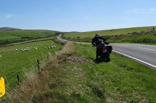Road-trip moto au pays de galles, paysages de rase campagne et ses moutons