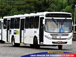Na Modelo Transportes são 14 novos ônibus