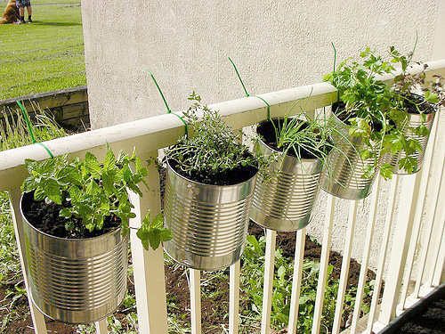 can-planters