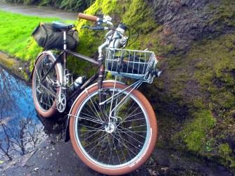 Hobbit bike, hobbit tree.