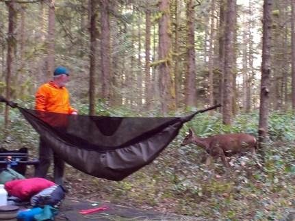 Brad communes with campground deer.