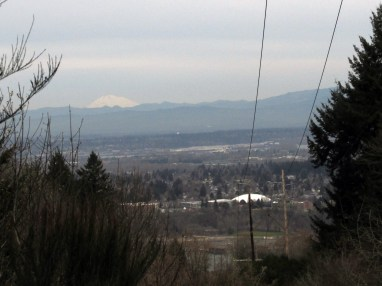 The view from Firelane 4. Mount Adams and North Portland below. That dome is at University of Portland