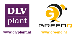 GreenQ-courses
