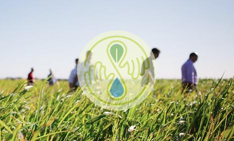 seedstock conference