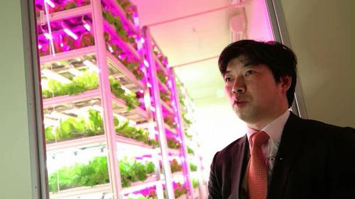 Shigeharu Shimamura shows his produce.