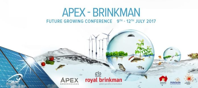 Apex Brinkman PCA Confeence 2017 artwork 5