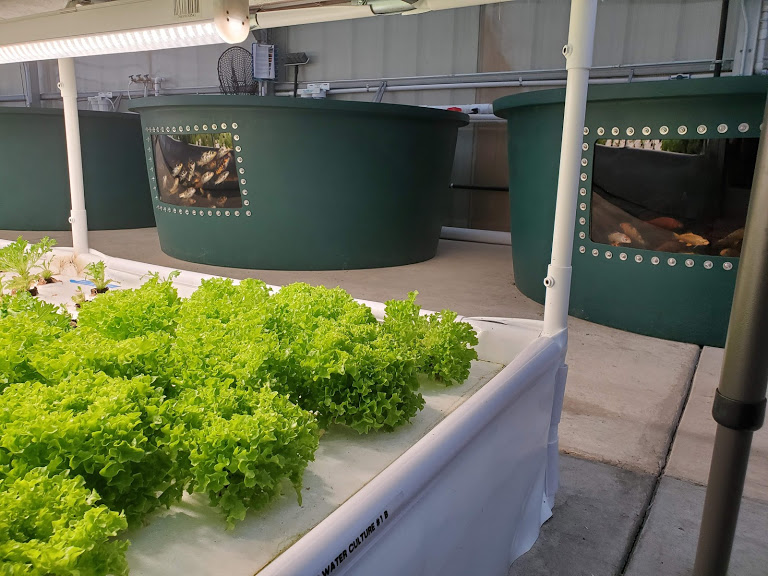TAKE ACTION: Tell Congress to Support USDA Urban / Innovative Ag...
