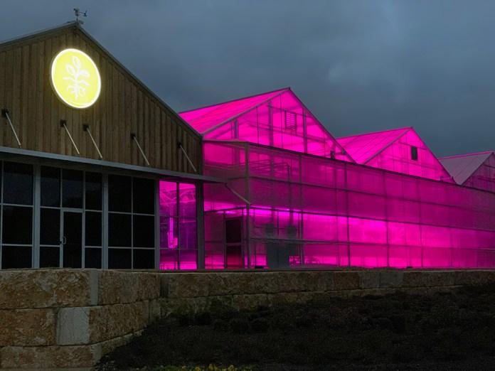 True Harvest Greenhouse, Texas