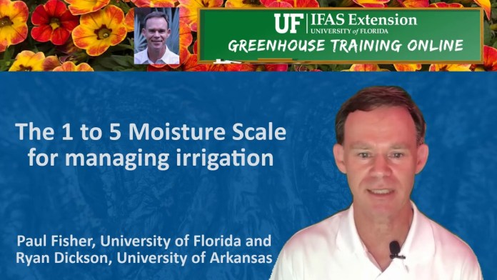 New videos on 1 to 5 moisture scale for container substrates from UF/IFAS Extension Greenhouse Training Online