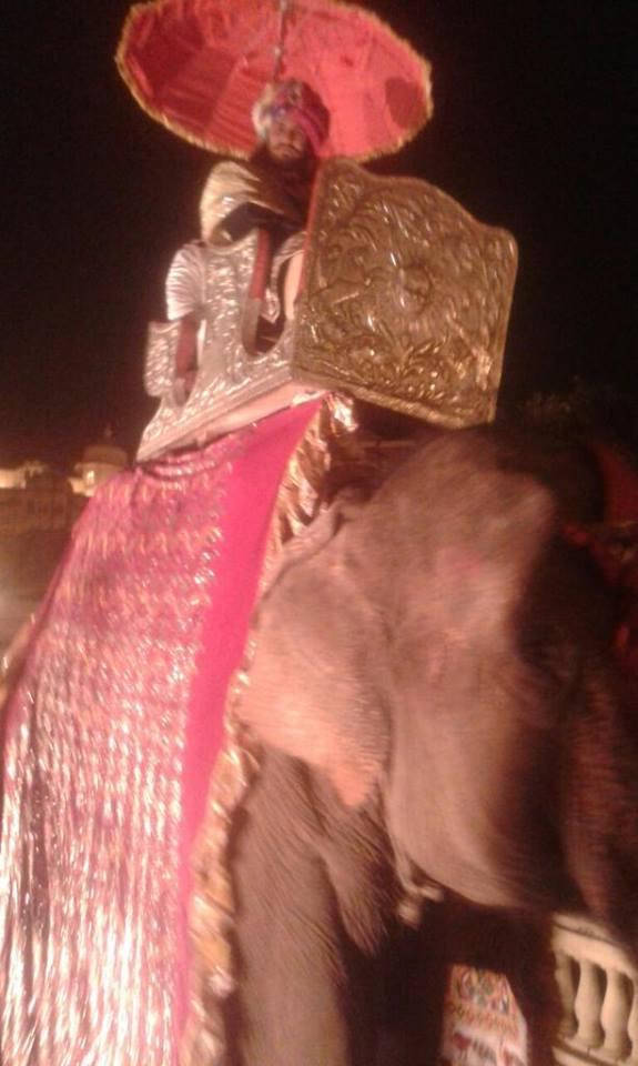 Rajat Tokas arrives on an elephant to his wedding