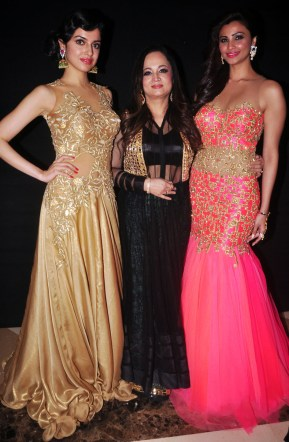 Main Tamanna Documentry Trailor Launch & Fashion Show DSC_0375