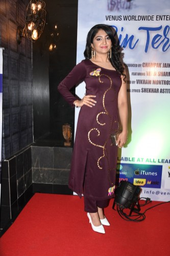 9. Bhumi Trivedi during BIN TERE SANAM single launch by VENUS DSC_2258