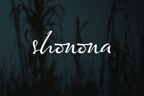 "Exclusive: ROYAL releases new track ""Shonona"" with a romantic Bengali Twist"