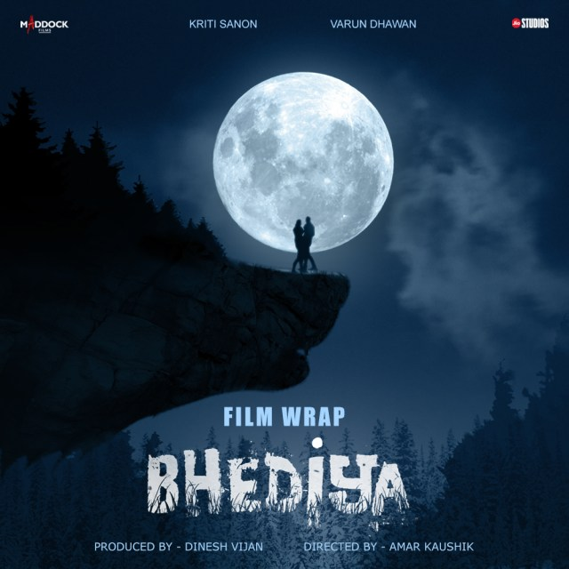 Kriti Sanon and Varun Dhawan wrap up the shoot of Bhediy