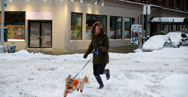Tara McLaughlin and her dog, Archie, gamboled in the snow at Broadway and West 107th Street. (Ángel Franco/The New York Times)