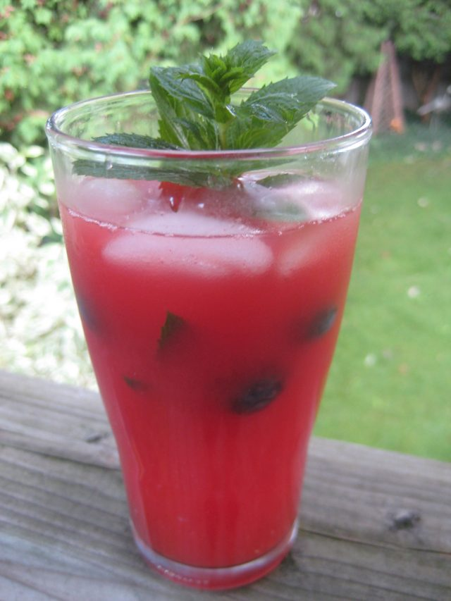 Watermelon Vodka Splash | © UrbanCottageLife.com