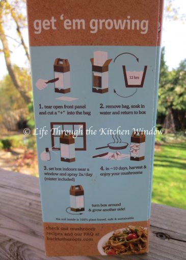 Oyster Mushroom Kit Instructions | © Life Through the Kitchen Window
