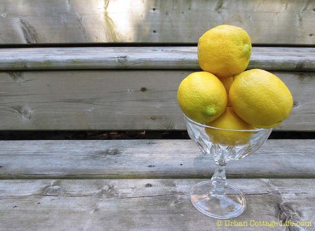 Thinking Lemony Thoughts  |© UrbanCottageLiife.com