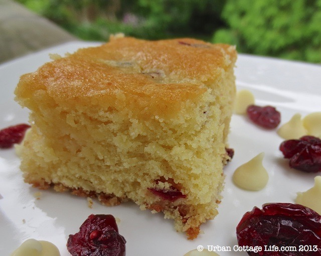 Cream Cheese, Cranberry & White Chocolate Blondies | © UrbanCottageLife.com
