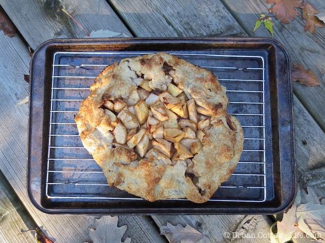 Apple Crostata with Maple Syrup, Vanilla & Ginger   © Urban Cottage Life.com