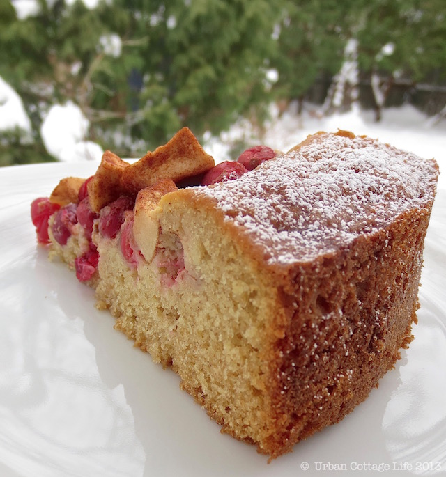 Apple Cranberry Coffee Cake |© UrbanCottageLIfe.com 2013