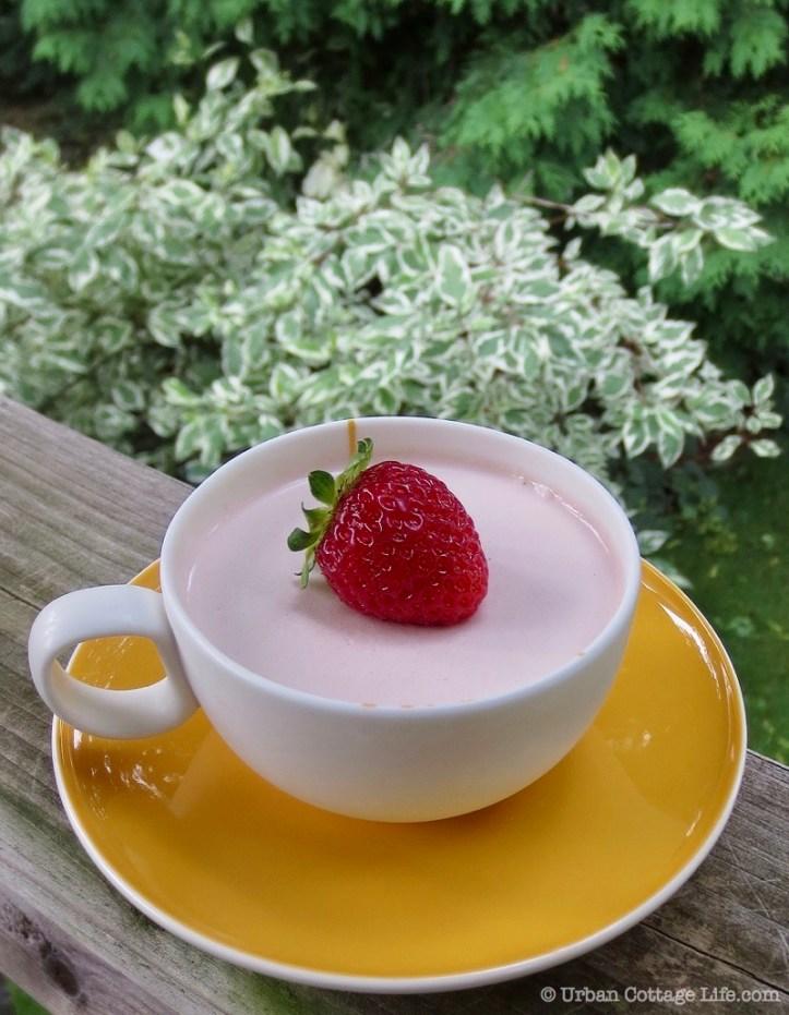 Strawberry Panna Cotta   © UrbanCottageLife.com