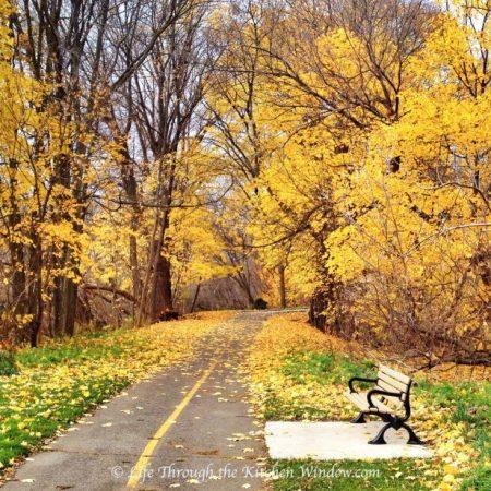 Autumn Leaves: Gold   © Life Through the Kitchen Window.com