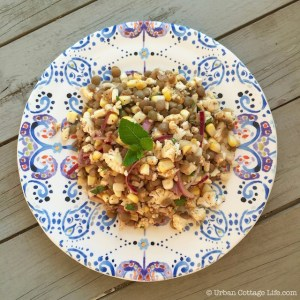 Lentil, Corn & Cauliflower Salad   © Urban Cottage Life.com
