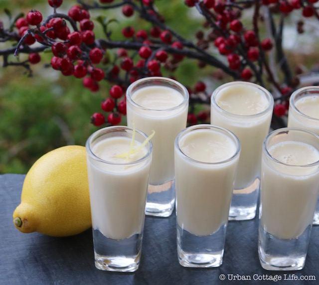 Lemon Posset | © Urban Cottage Life.com